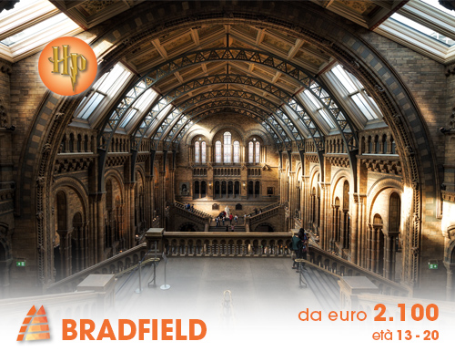 Bradfield_2020 (1)